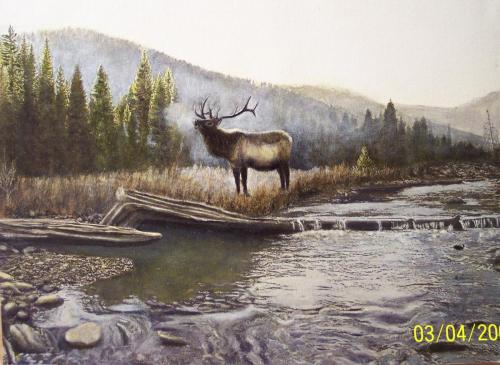 Elk on Mosquito Creek original by Don Matteson